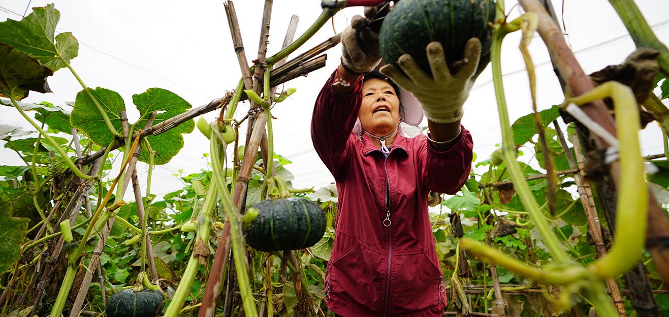 北京密云:长城脚下的宜居山村