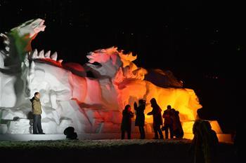 阿爾山:冰雪迎遊客