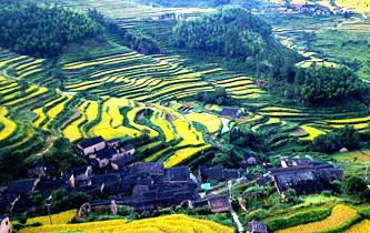 生態中國·碧水丹山瞰武夷