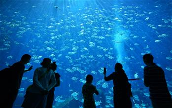海南打造國際旅遊消費中心