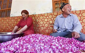 和田農民:從挖玉人到採花人
