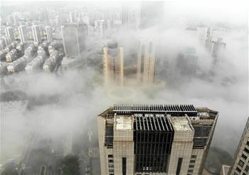 青島沿海平流霧籠罩