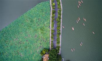 俯瞰夏日西湖