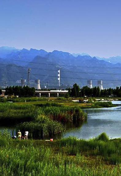 电力人的芳华--华能陕西发电公司电力人与改革开放的故事