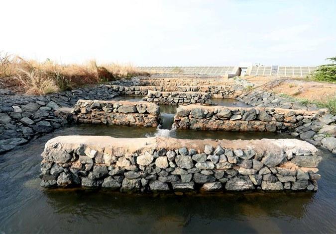 为鱼儿保障回家的路——中国水电工程助力柬埔寨绿色发展