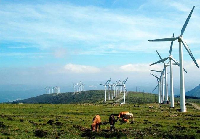 山东将加快推进分散式风电发展