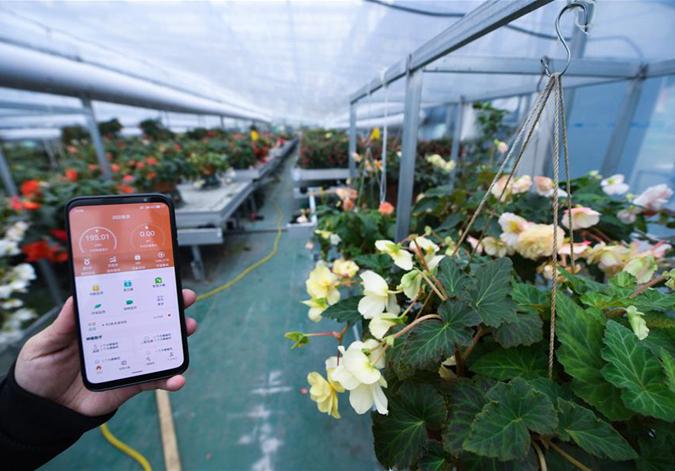 浙江安吉:智慧用能平台助力乡村智能电气化