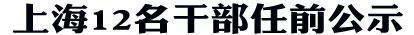 上海12幹部任前公示 王力為劉偉擬任上海團市委副書記