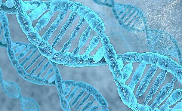表观遗传研究——基因检测的秘密