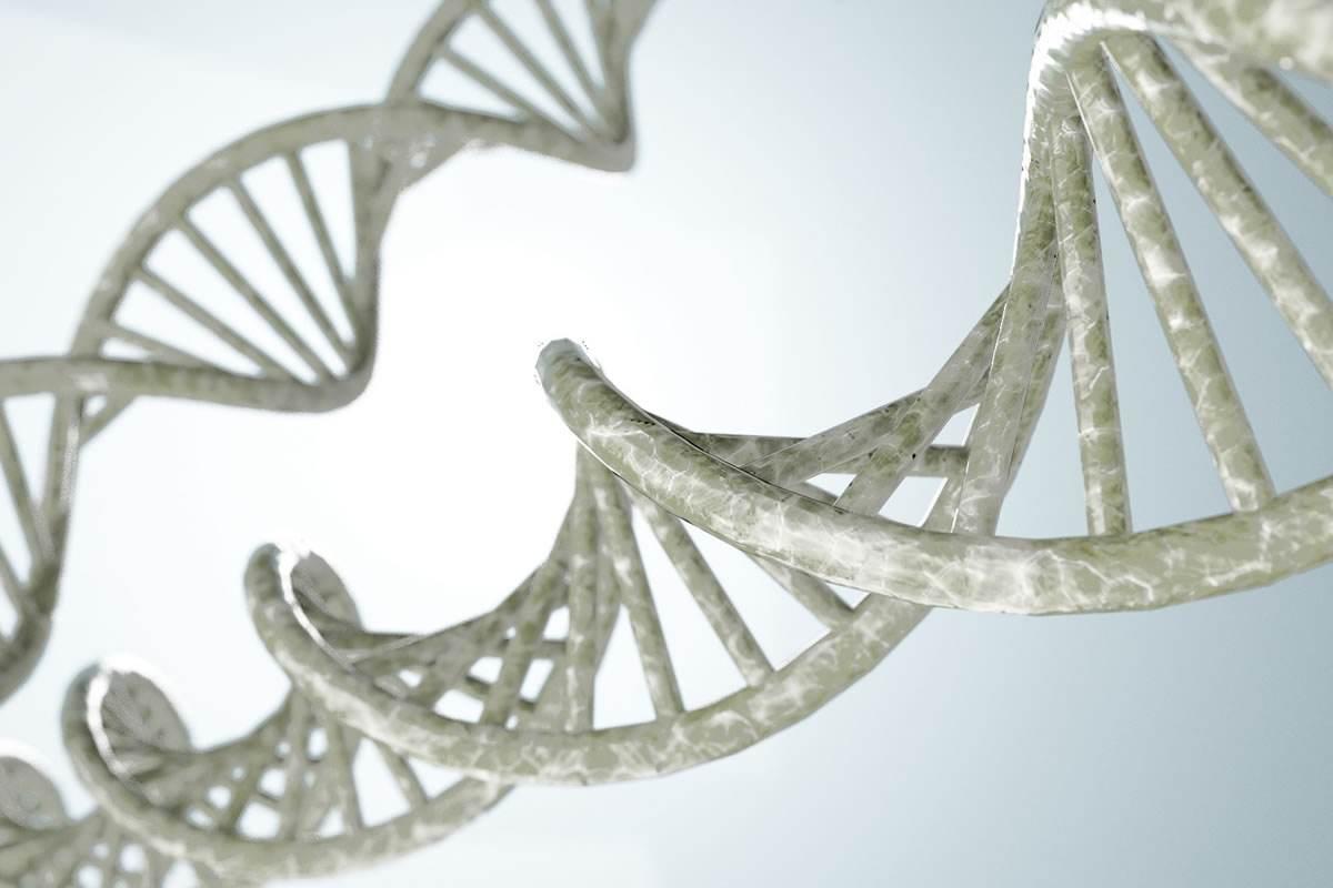 """基因治疗——遗传病秒变""""缩头乌龟"""""""