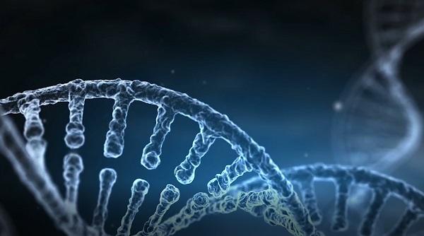 人類基因組的奧秘