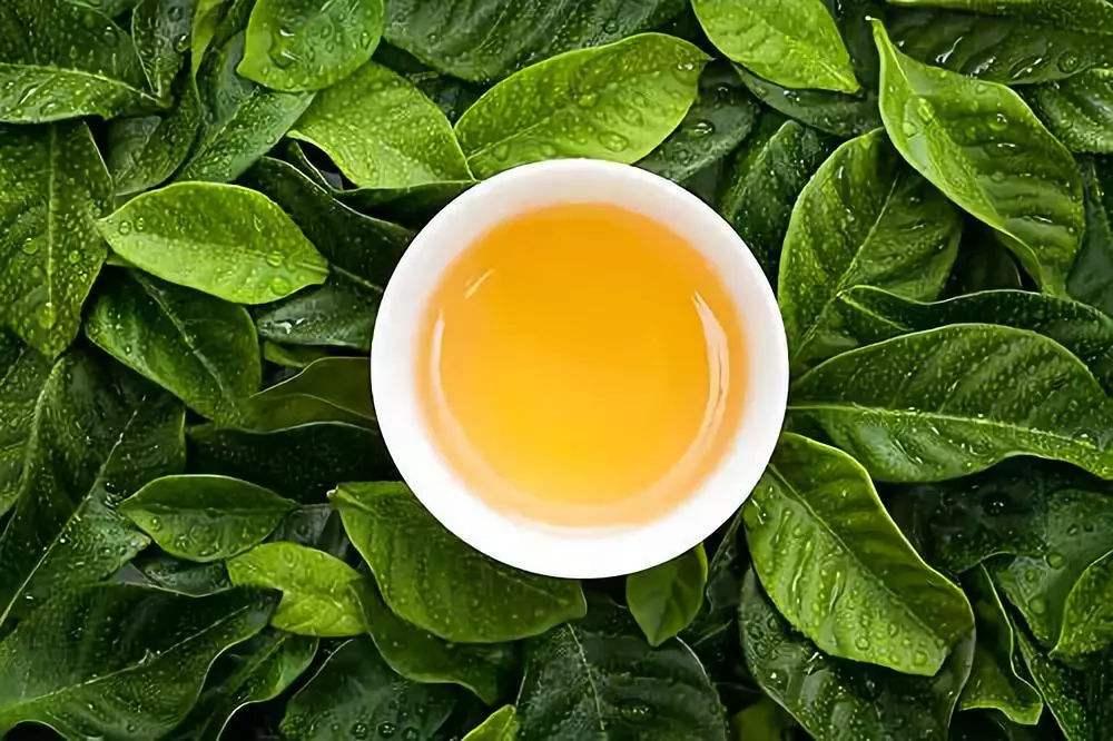 飲燙茶需謹防食道癌