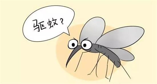 夏季防蚊大作戰