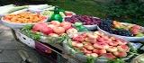 甜蜜素可以增加水果的甜度吗?