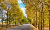 秋季要预防哪些气象病?