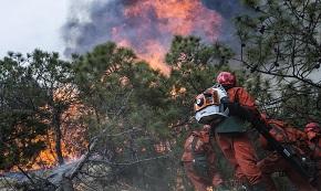 森林火災小常識