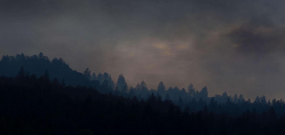 一點星星火,能毀萬畝林