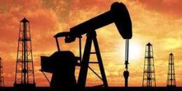 古生物学研究如何助力油气资源的勘探开发