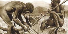 人类从何而来? 走近人类进化史