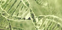 揭秘基因 造福人类