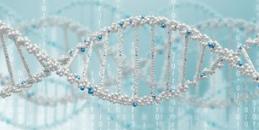 基因如何造福人类