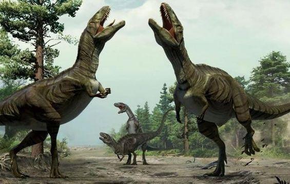 探索古生物学的奥秘——恐龙的演化(下)