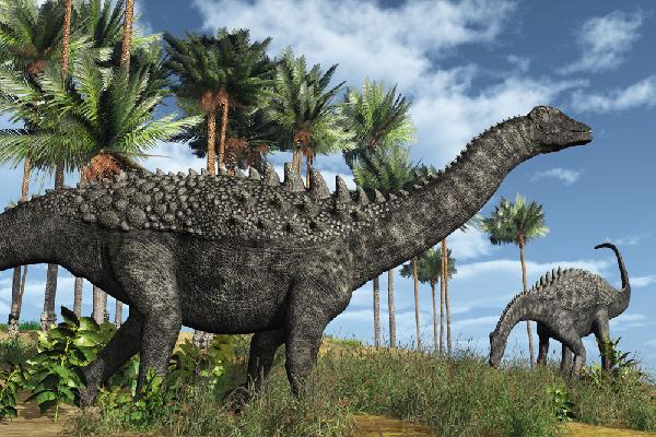 揭秘古生物的进化之谜