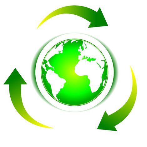生态学发展探索的前行之路
