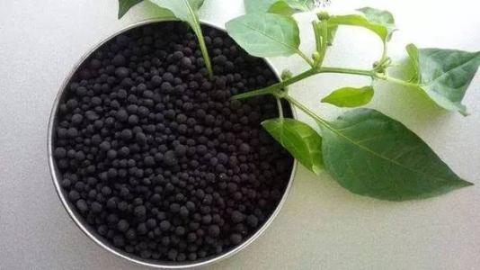 农业生产的物质基础——肥料