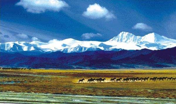 三江源国家公园的科学保护方法