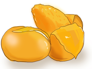 营养丰富的芒果