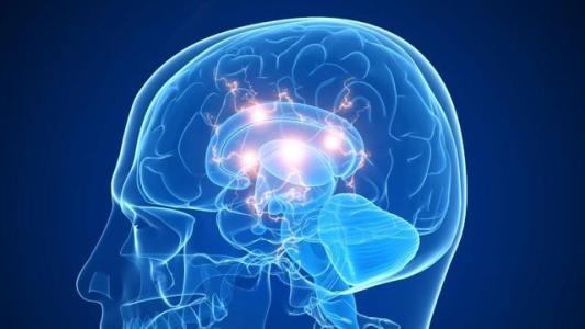 脑与认知科学国家重点实验室