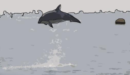 鱼儿为什么要跳出水面?