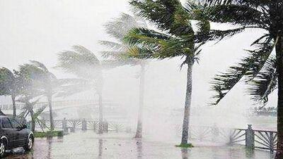 台风科学面面观