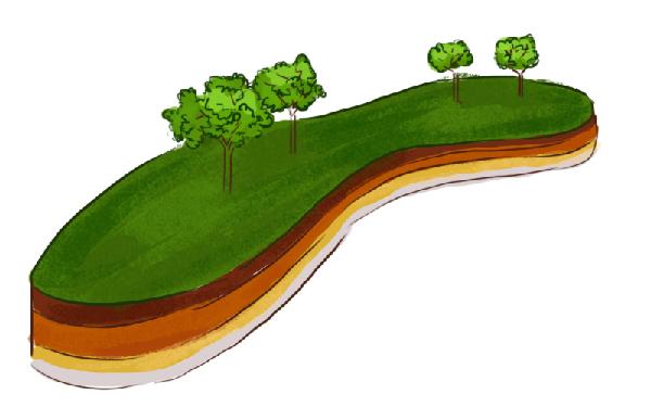 土壤分为哪几层?