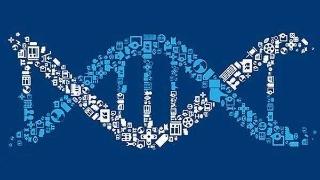 生命旅程的掌舵者——表观遗传
