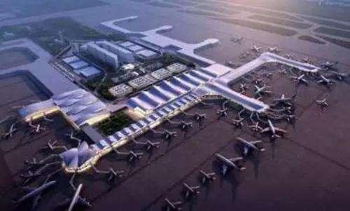 为什么机场要经常驱鸟?