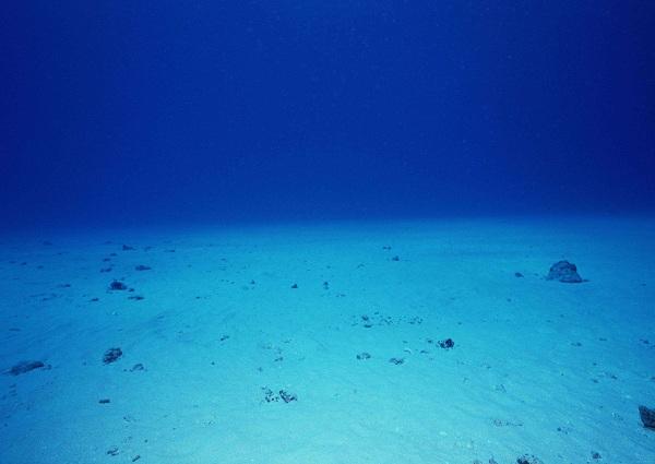 追寻深海的秘密