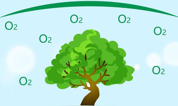 藍奇奇説科普——是誰制造的氧氣?