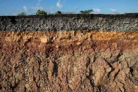 土壤的分层你了解吗?