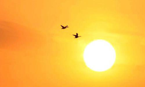 你了解太阳所产生的巨大能量吗?