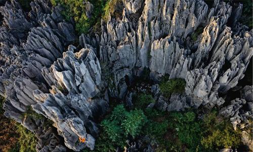 带你认识岩石——石灰岩
