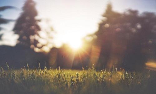 """节气小常识:夏至日,""""昼晷已云极"""""""