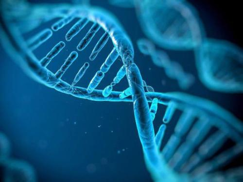 人類基因組新數據集反映25個人種間遺傳差異