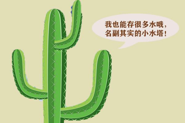 你知道自然界有哪些植物水塔吗?