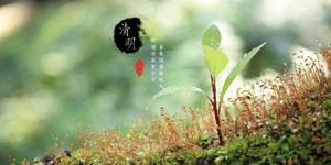 [网络中国节]清明节诗词欣赏