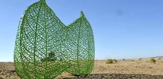 藝術之花綻放沙漠