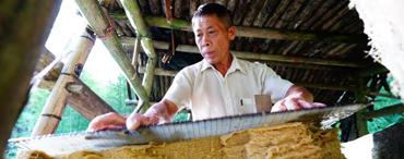 古法造紙技藝