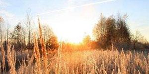 立冬:清霜冷絮裯,紅葉滿階頭