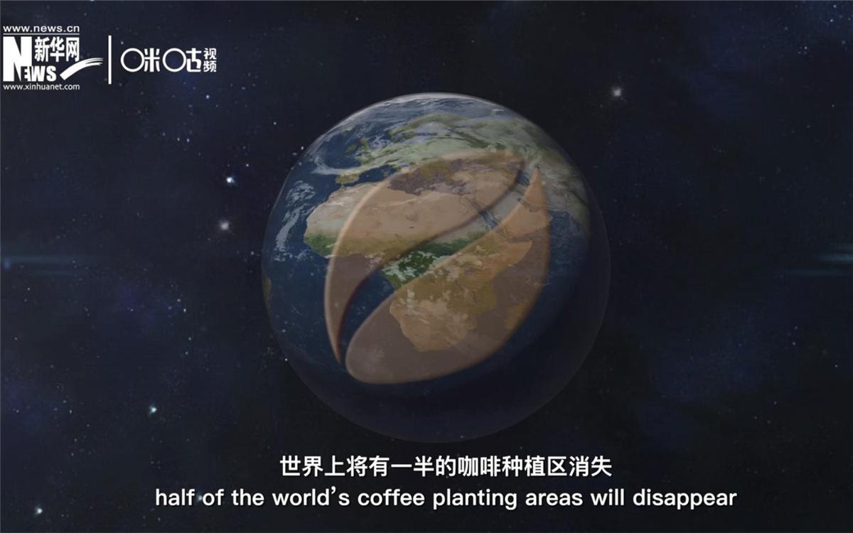 科学家预测到三十年后,世界上将有一半的咖啡种植区消失